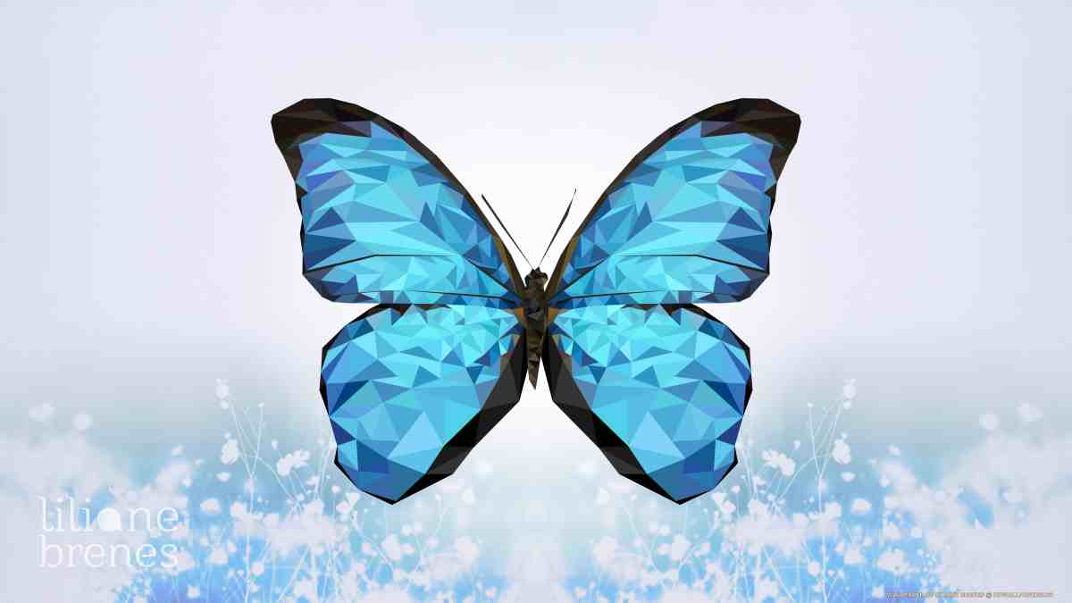 Wallpaper Butterfly [HD]